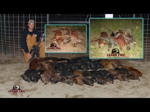 Feral Hog Control Methods    (23) 27/27 Hog Trapping With Integrated Wild Pig Control™    JAGER PRO™