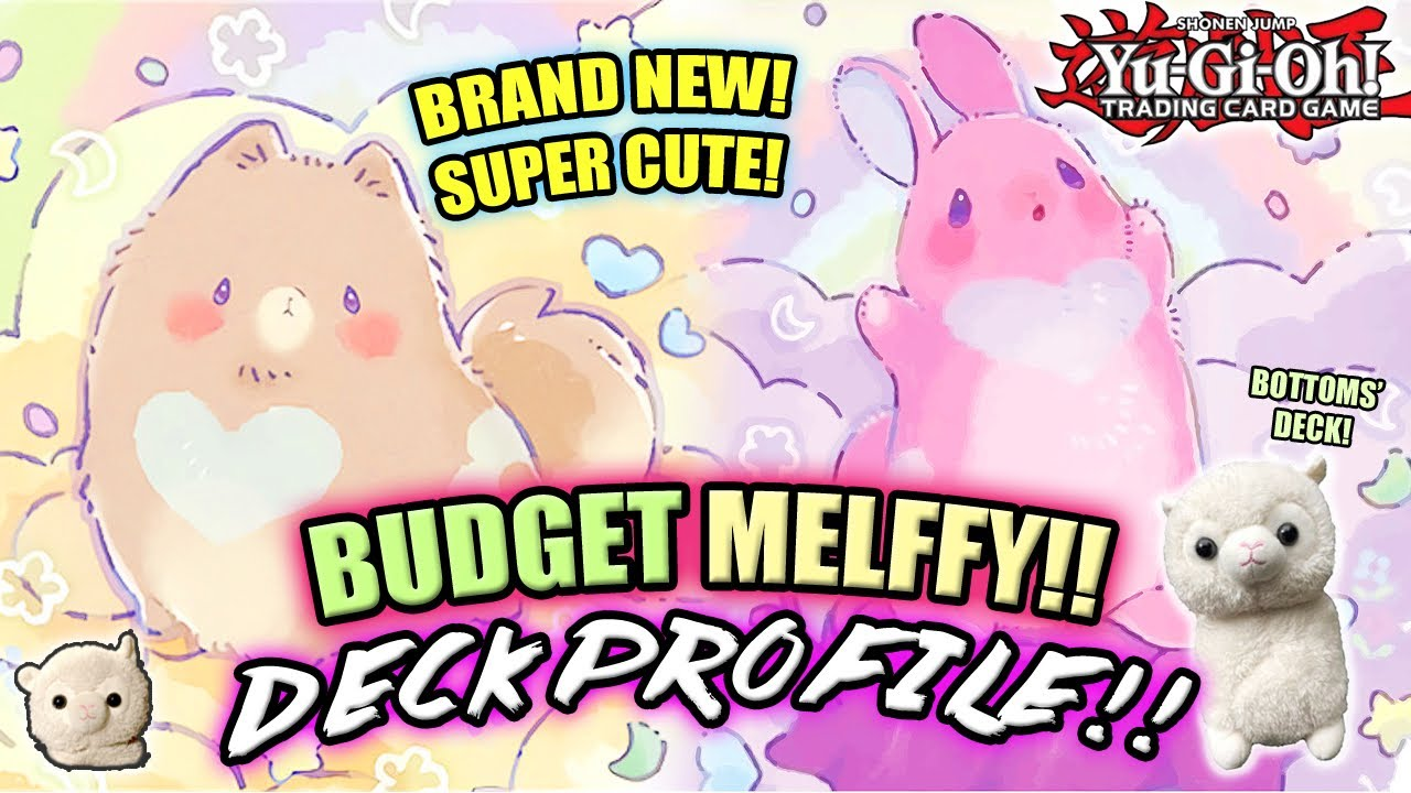 *NEW* Yu-Gi-Oh! BUDGET MELFFY DECK PROFILE! w/ Test Hand & Combo! CUTE, CUDDLY & CHEAP! AUGUST 2020!