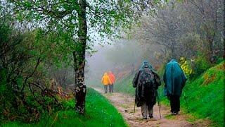El Camino de Santiago Portugués   Etapa entre Padrón y Santiago 2015