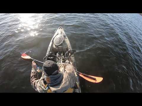 Kayak Fishing For Walleye In Shining Tree Oct'19