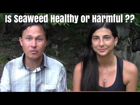 Is Seaweed a Healthy or Harmful Superfood ??  on a Raw Food Diet