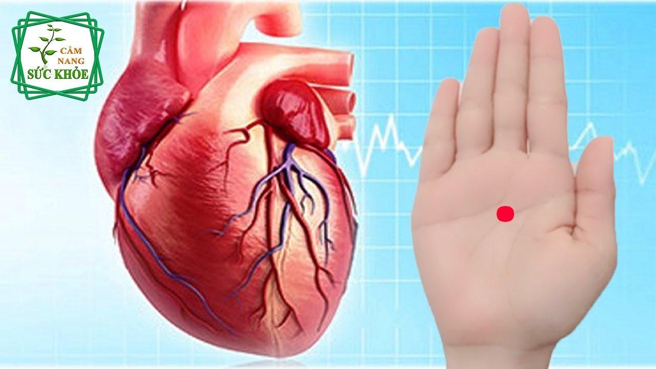 3 Bí Quyết Để Có Một Trái Tim Khỏe Mạnh-Không Lo Bệnh Tật