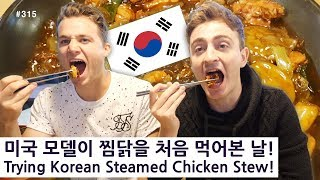 미국 모델이 찜닭을 처음 먹어본 날! (315/365) Trying Korean Steamed Chicken Stew! Mukbang