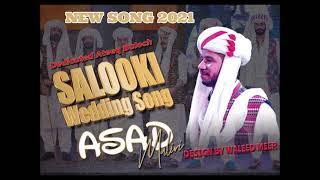 Balochi Song 2021 - Bebanden Salonke Paga - New Balochi Wedding Song - By Asad Maliri