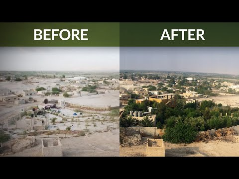 10-Year Timeline of the Greening the Desert Project