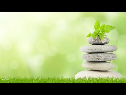 Deeply Relaxing Meditation Music, Calming Music, Study Music, Soft Relaxing Mind and Body Music