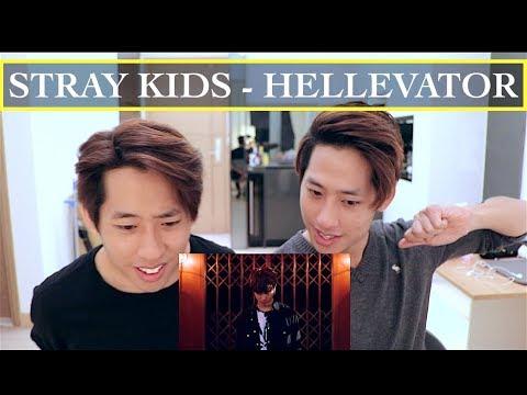 """STRAY KIDS """"HELLEVATOR"""" MV REACTION 스트레이 키즈"""