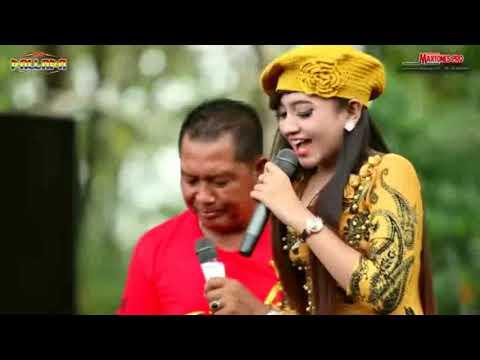 Pria Istimewa - Jihan Audy - New Pallapa 2017