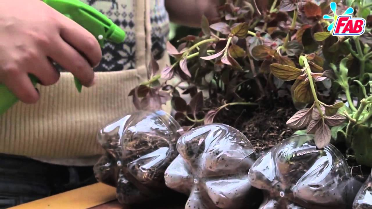 C mo hacer un jard n colgante con objetos reciclados for Como hacer un jardin