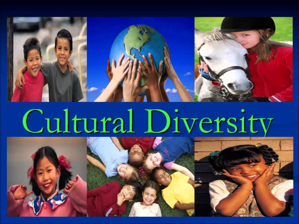 piercing together the puzzle of multicultural education Free essay on the value of multicultural education available totally free at echeat first puzzle and the pieces fall although every piece is different.