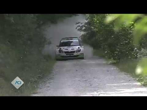CIR - 42° San Marino Rally PS1-PS2 06/07/2014