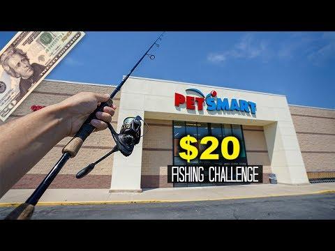 $20 Pet Store Fishing Challenge!! (Surprising!)