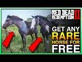 HOW TO GET ANY RDR2 Horse In Red Dead Redemption 2 Red Dead 2 Horses Red Dead 2 Best Horse mp3