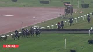 Vidéo de la course PMU PRIX UBU III