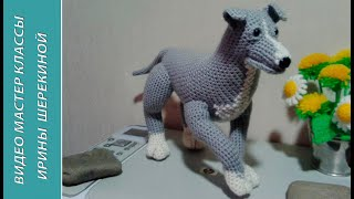 Пітбуль, 3 ч.. Pitbull. р. 3. Amigurumi. Crochet. Амігурумі. Іграшки гачком.