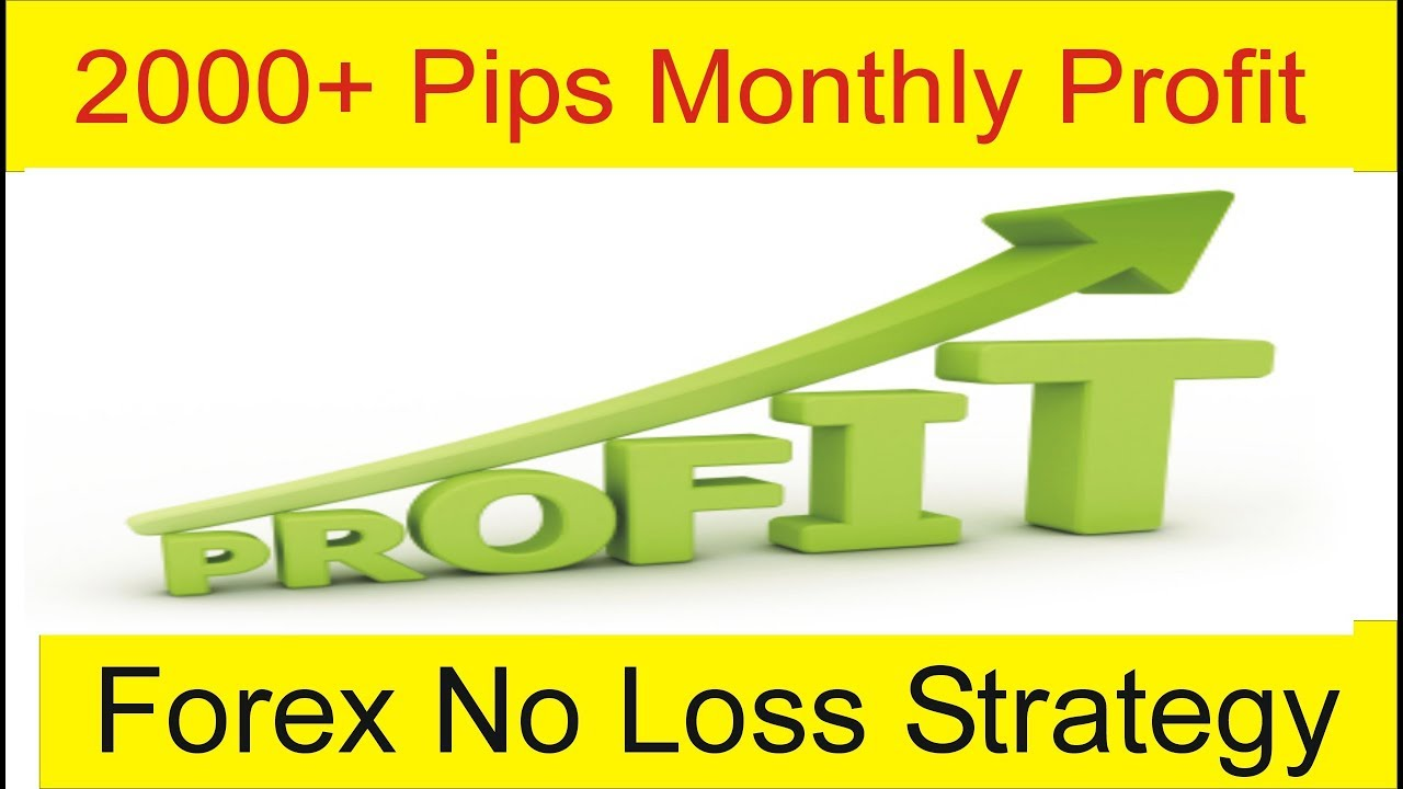 Average forex monthly profit