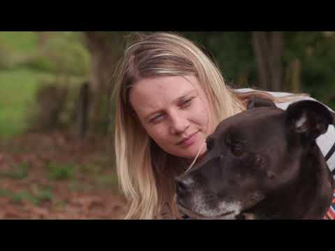 Rescue dogs changing young lives - Nelson ARK & ANZ Bank