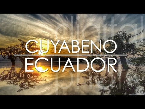 Cuyabeno Amazon Jungle Tour - Ecuador in 4K