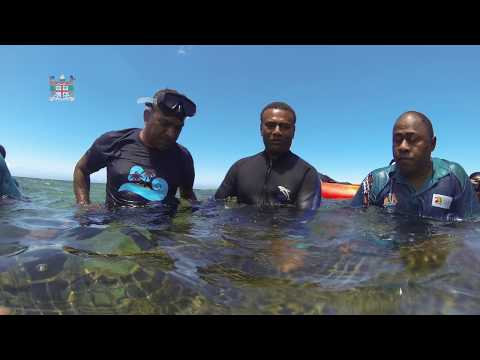 Fijian Minister for Tourism officiates the World Tourism Day Coral Planting.