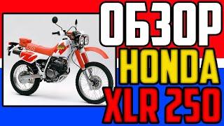 ОБЗОР Honda XLR 250 Baja. Старый друг лучше новых двух.