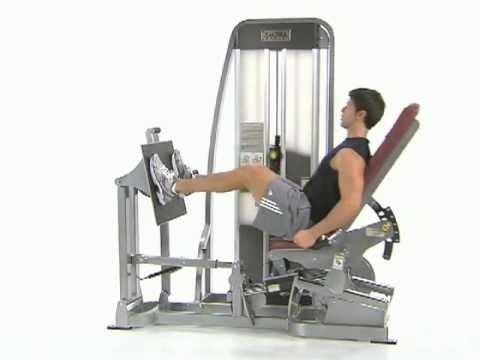 Bilateral Leg Press - Cybex Eagle Leg Press