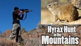 Hyrax Hunt in the Mountains - The Experience is Worth the Climb!