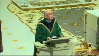 Solemn Novena, Day One November 14, 2016 Fr. Michael Callaghan, CM ...