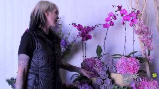 January 2014 Wholesale Flower Product Showcase: Radiant Orchid