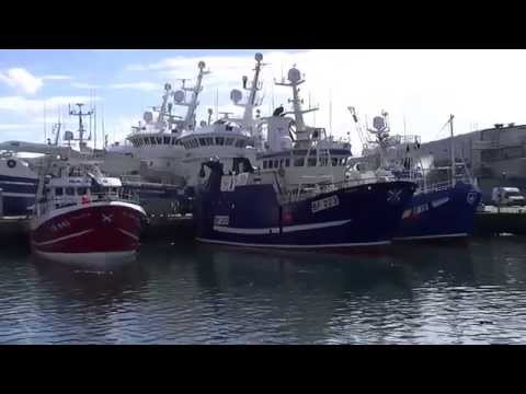 Fraserburgh Harbour, fishing boats