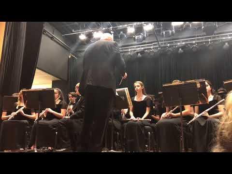Tyler's Amador High School Band 2018 Performance