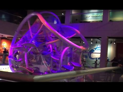LIBERTY SCIENCE CENTER EXPERIENCE - WALK THROUGH AND EXHIBITS/SHOWS (Jersey City, NJ)
