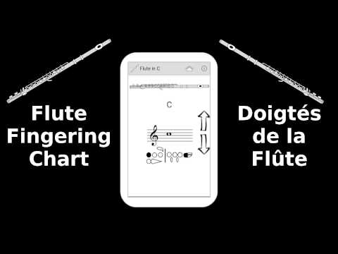Flute Fingering Chart  Android Apps On Google Play