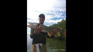 Рыбалка в Новосибирске, р.  Обь, п.  Бибиха. Ловля щуки.
