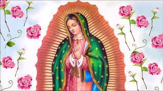 Oração e súplica a Nossa Senhora do Guadalupe