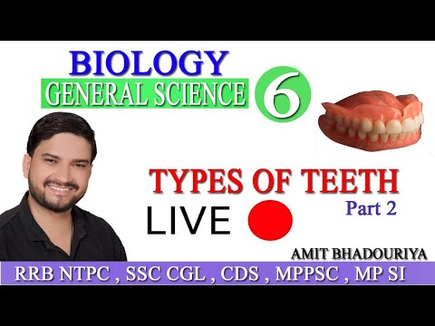 biology-|-day-6-|-types-of-teeth-|-part-2-|-human-physiology-|-digestive-system-|-general-science