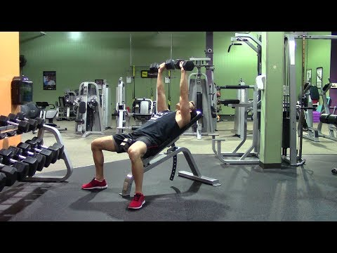 beginner weight training in the gym  hasfit strength