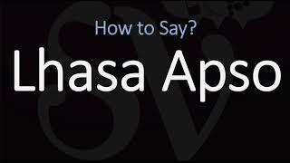How to Pronounce Lhasa Apso Dog? (CORRECTLY)