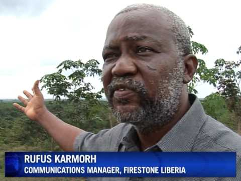 Liberia's rubber industry bounces back
