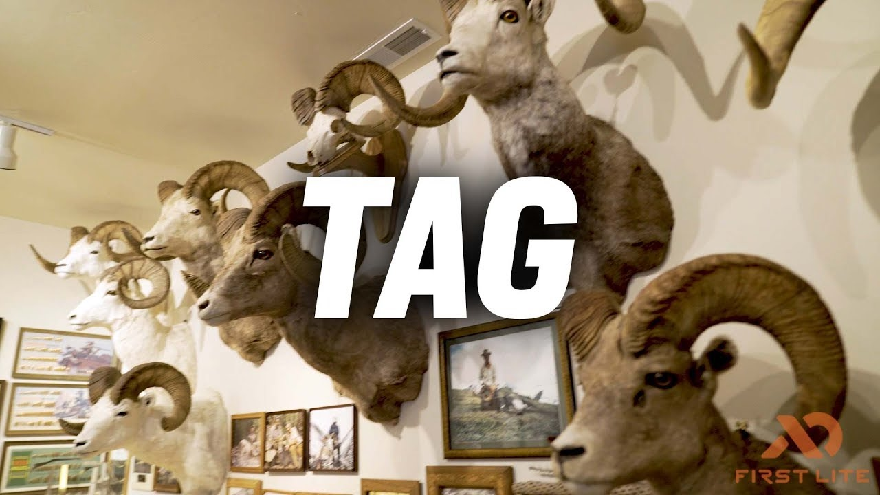 9c0d2bac8068c Tag - YouTube