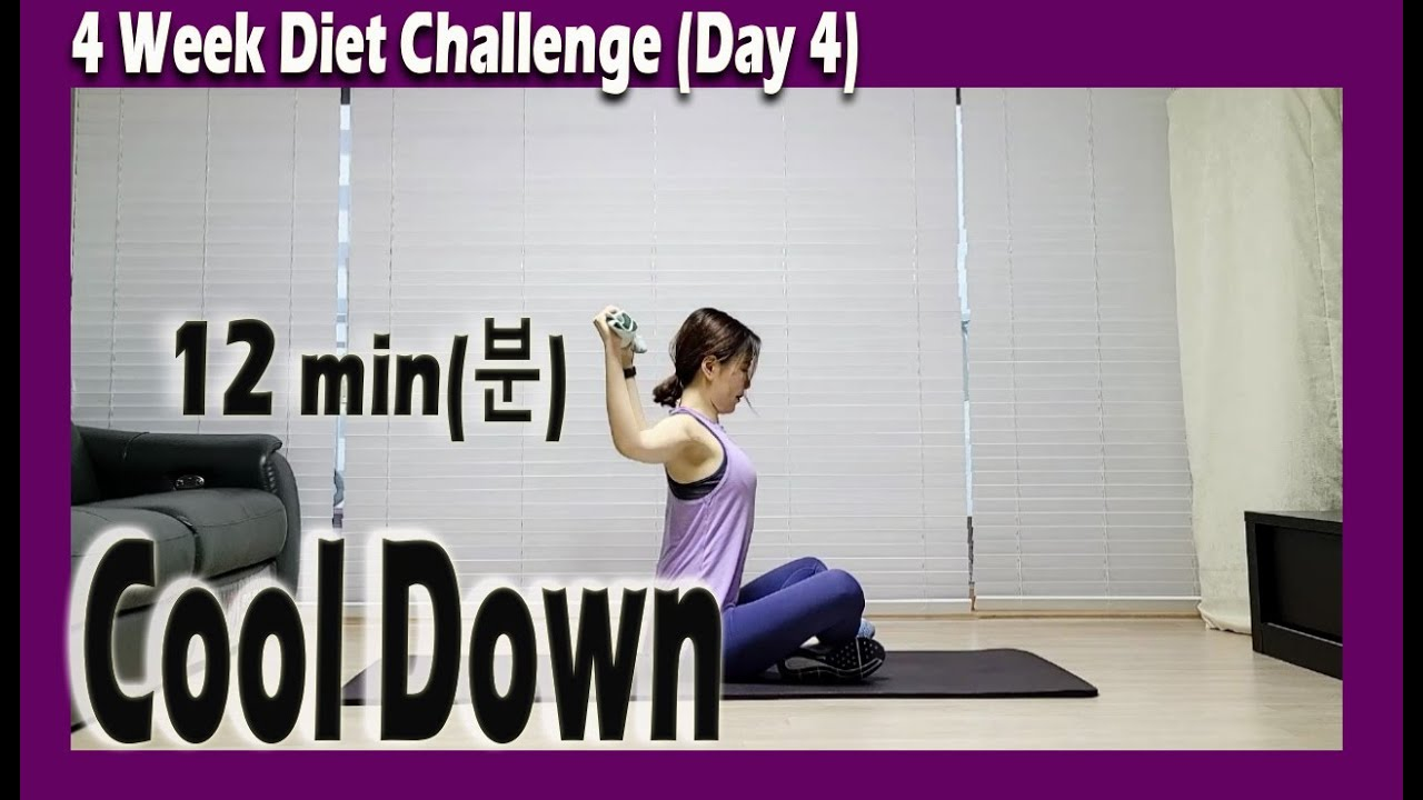 [4 Week Diet Challenge] Day 4 | 12 minute Stretching Workout | 12분 스트레칭 | ABS | Sunny Funny Zumba