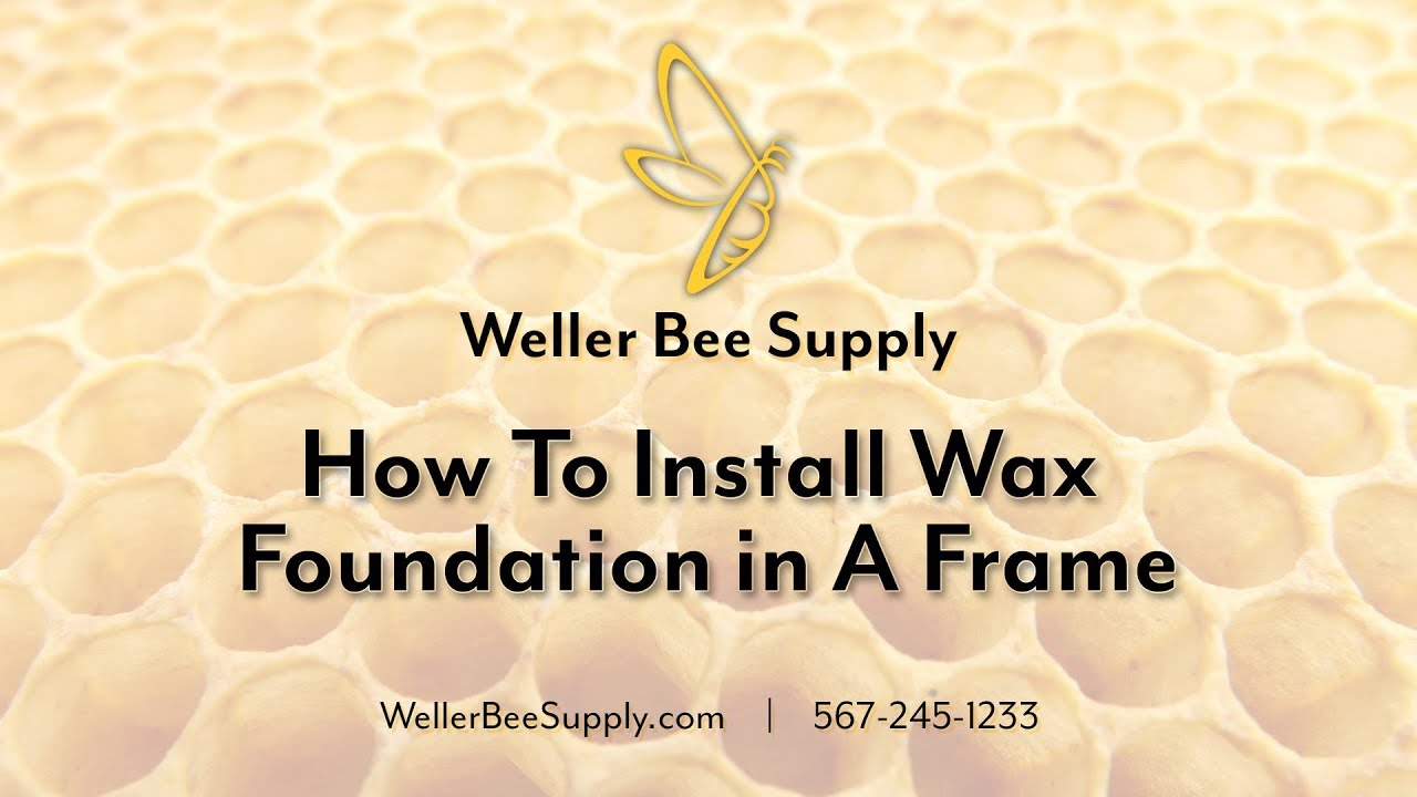 How To Install Wax Foundation in A Frame