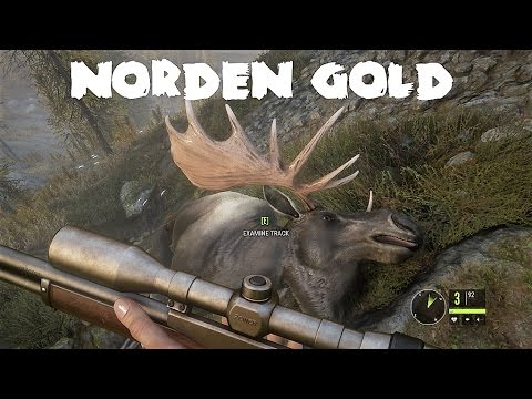 theHunter - Call of the wild - Norden Gold