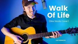 Walk Of Life • Joe Robinson • Dire Straits Cover