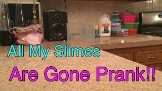 My Brother Pranks Me!! All My Slimes Are Gone Prank!!