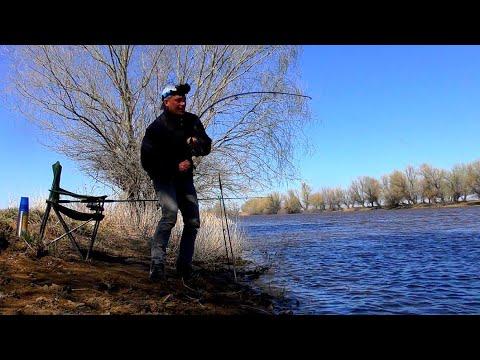 Разведка на воблу 2020 Удачная весенняя рыбалка Астраханская вобла пошла
