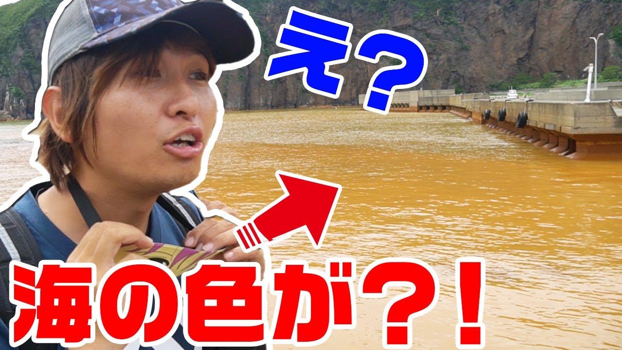 釣りいろは スン 脱退 理由 落第忍者乱太郎の登場人物 - Wikipedia