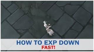 HOW TO EXP DOWN FAST! - Ragnarok M Eternal Love