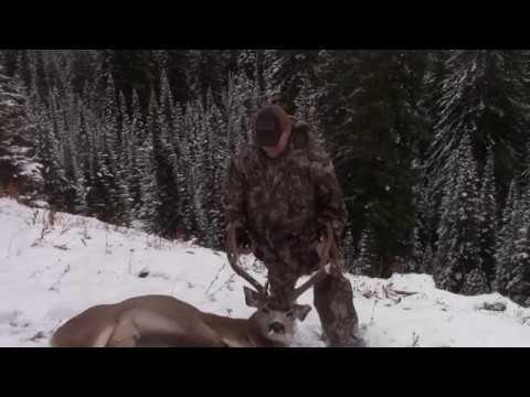 2019 Eagle Cap Mule Deer