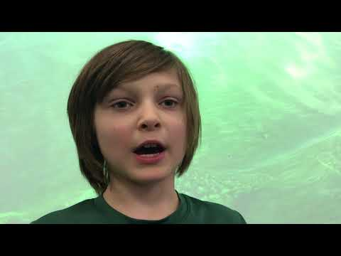 Lake Bluff Elementary School - Watershed Project