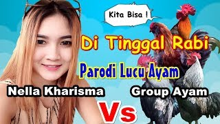 Lucu !!! Nella Karisma Vs Ayam nyanyi | Di Tinggal Rabi # Parodi